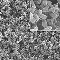 Coated Precipitated Calcium Carbonate (PCC)