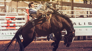 Over 2 Million In Prize Money Calgary Stampede