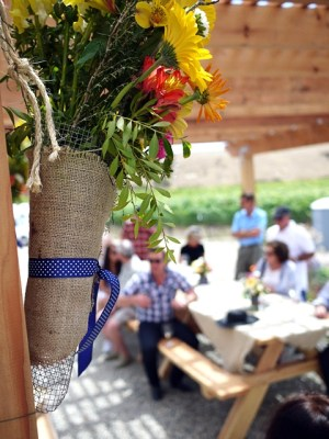 Brewer-Clifton Chardonnay & Pinot Noir vineyard picnic in Santa Barbara Wine Country