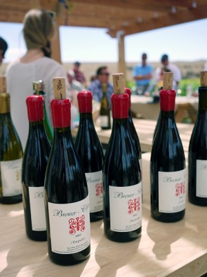 Brewer-Clifton Chardonnay & Pinot Noir vineyard picnic in Santa Barbara Wine Country