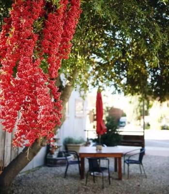 Los Olivos, historic town in Santa Barbara wine country