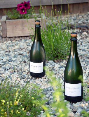 Biddle Ranch Vineyard Sparkling Wine in San Luis Obispo County