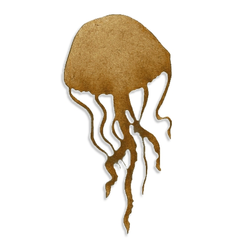 Types Names Jellyfish