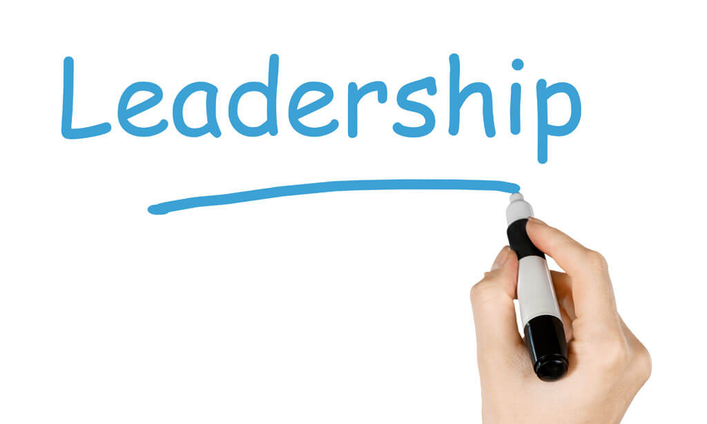 Tailored Leadership Development Programs Create Great Leaders