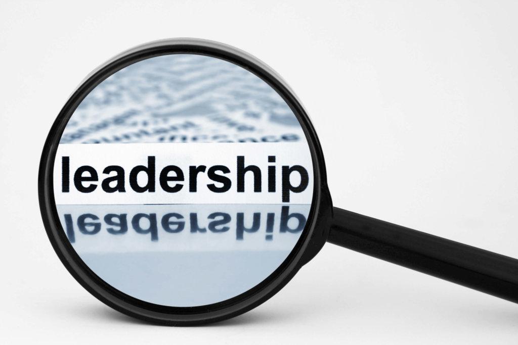 Tailored Leadership Development Programs Create Great Leaders