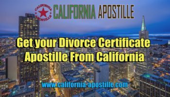 Birth Certificate Apostille For Dummies