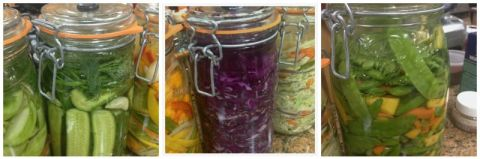 Vegetable Preserving