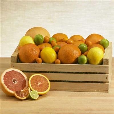 Melissa's Citrus Crate