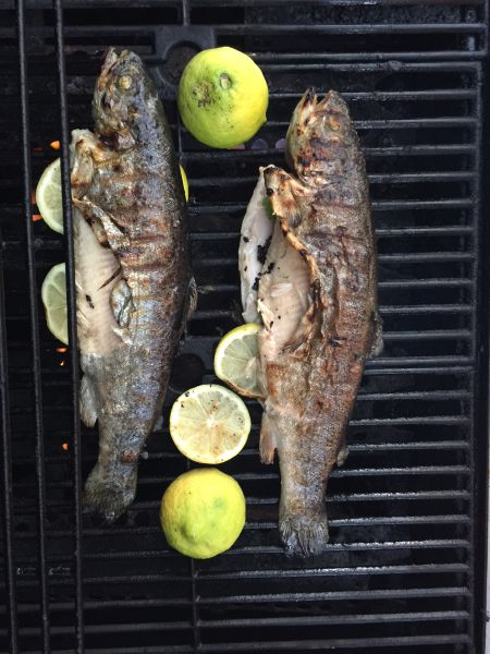 Greek Grilled Trout Lemons