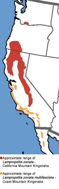 California Mountain Kingsnake Range