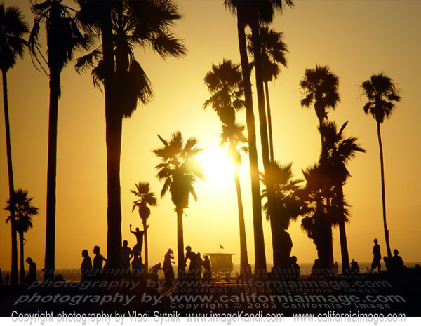 https://i1.wp.com/www.californiaimage.com/gallery_stuff/images/Venice-Beach-Skaters.jpg