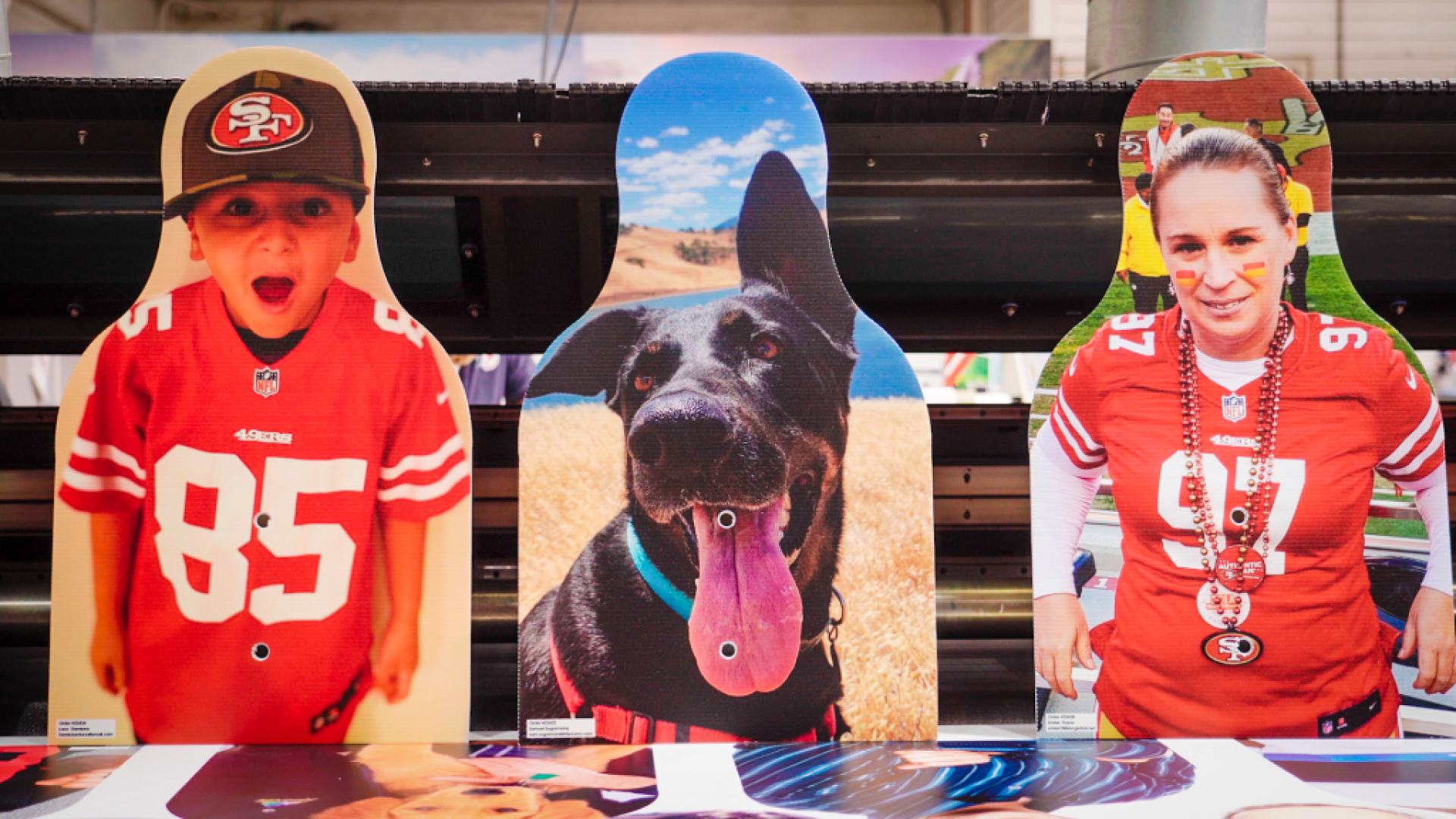 three head-and-shoulders cut-out photos: two of people in 49ers jerseys, and one of a black dog with its tongue out.