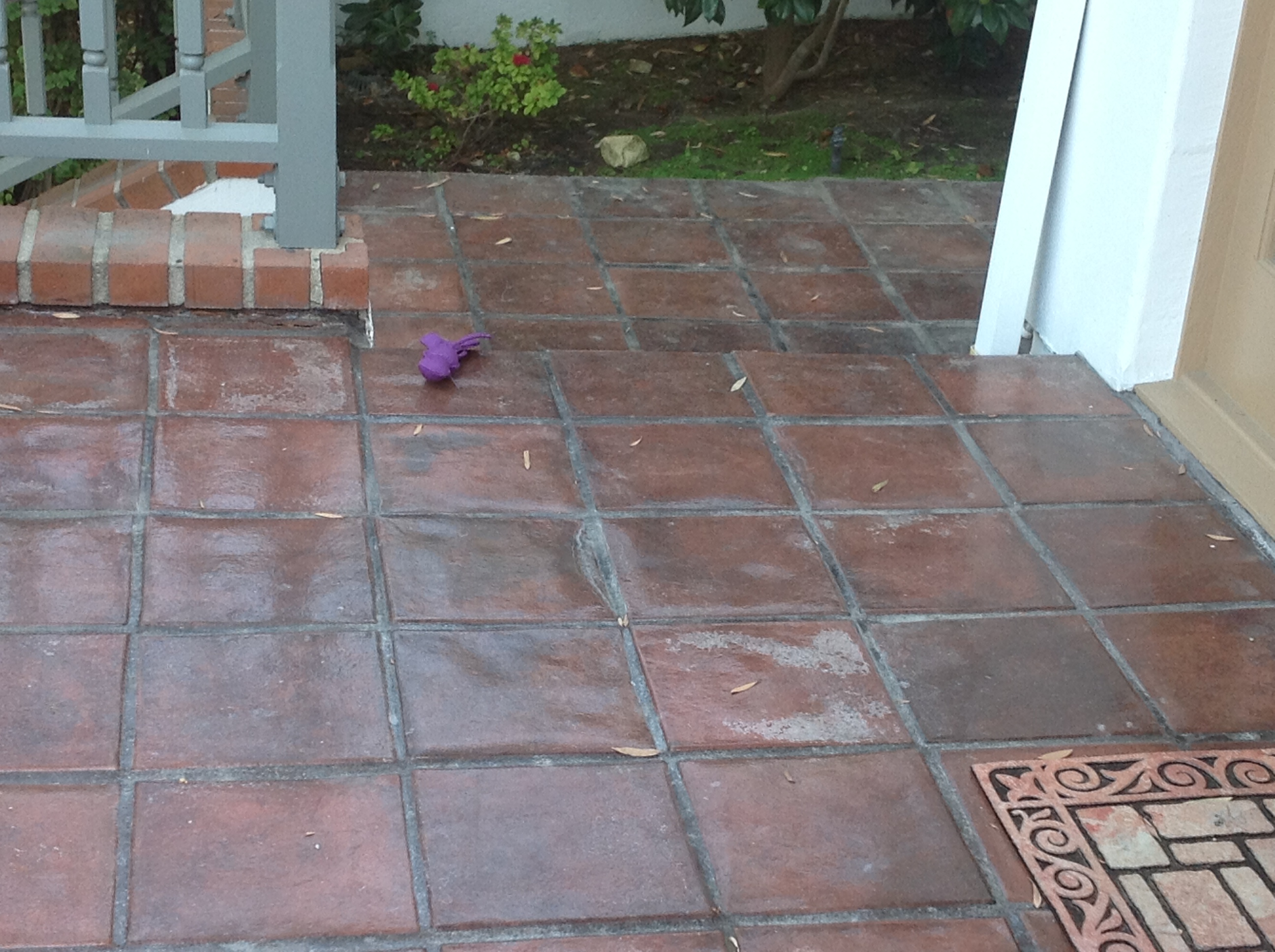 to clean outside terracotta tile