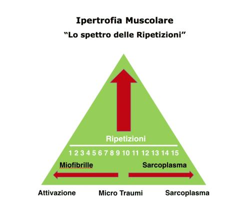 calisthenics speciale massa