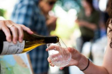 calistoga-winegrowers-CSFW-2019-35