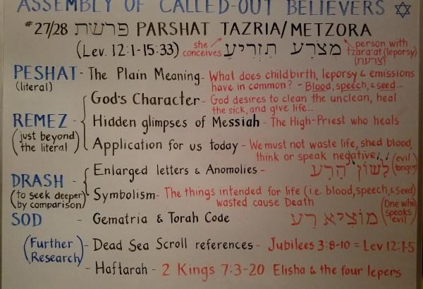 Tazria - Metzora whiteboard by Pastor Isaac Heckman