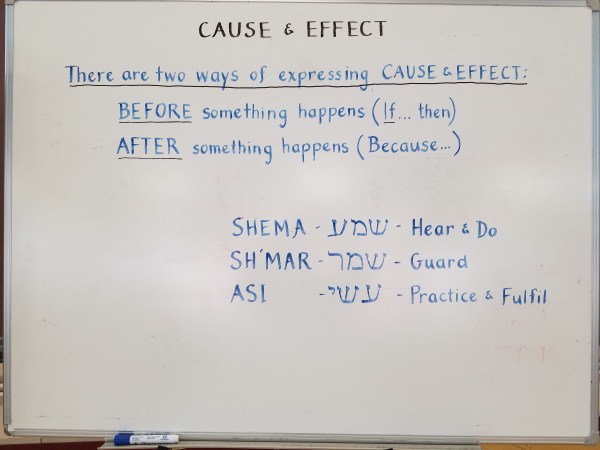 Eikev - Cause & Effect by Rabbi Yitzchak