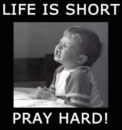 funny mormon memes prayer
