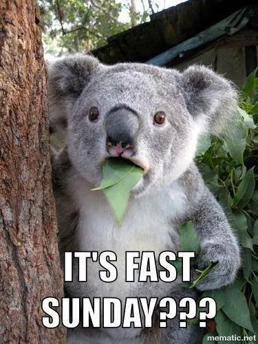 fast fasting memes