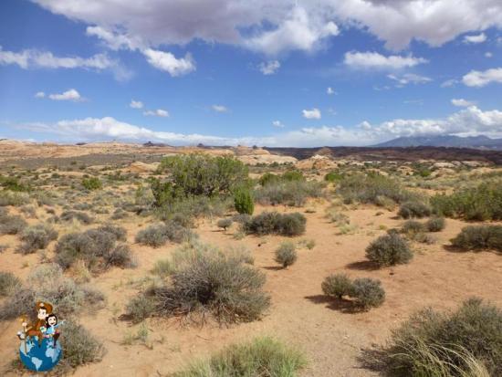 Ancien Sand Dunes - Parque Nacional Arches