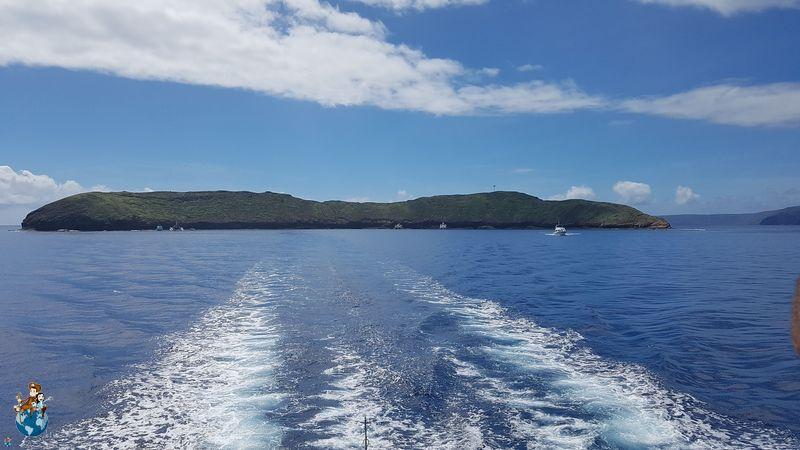 Cráter Molokini - Maui