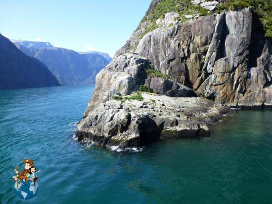 Crucero por Milford Sound