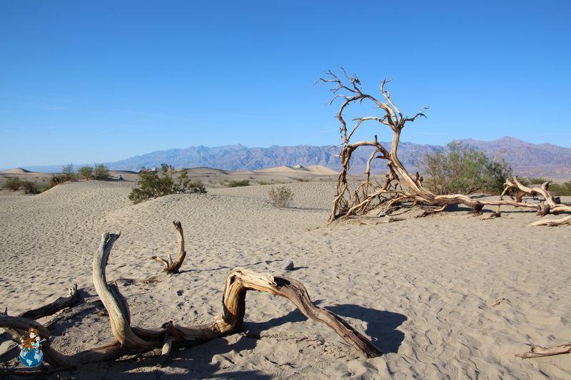 Mesquite Flat Sand Dunes en Death Valley