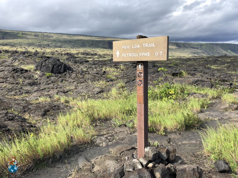 Petroglifos Pu'u Loa en Parque Nacional de los Volcanes