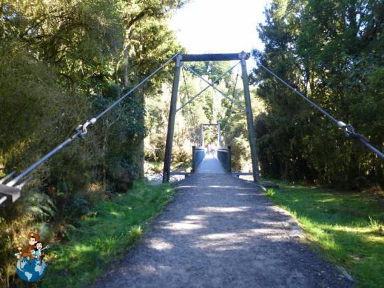 Puente sobre el Río Clearwater - Lago Matheson