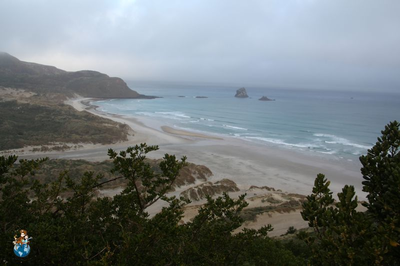 Playa Sandfly