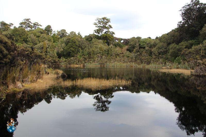 Lago Wilkie