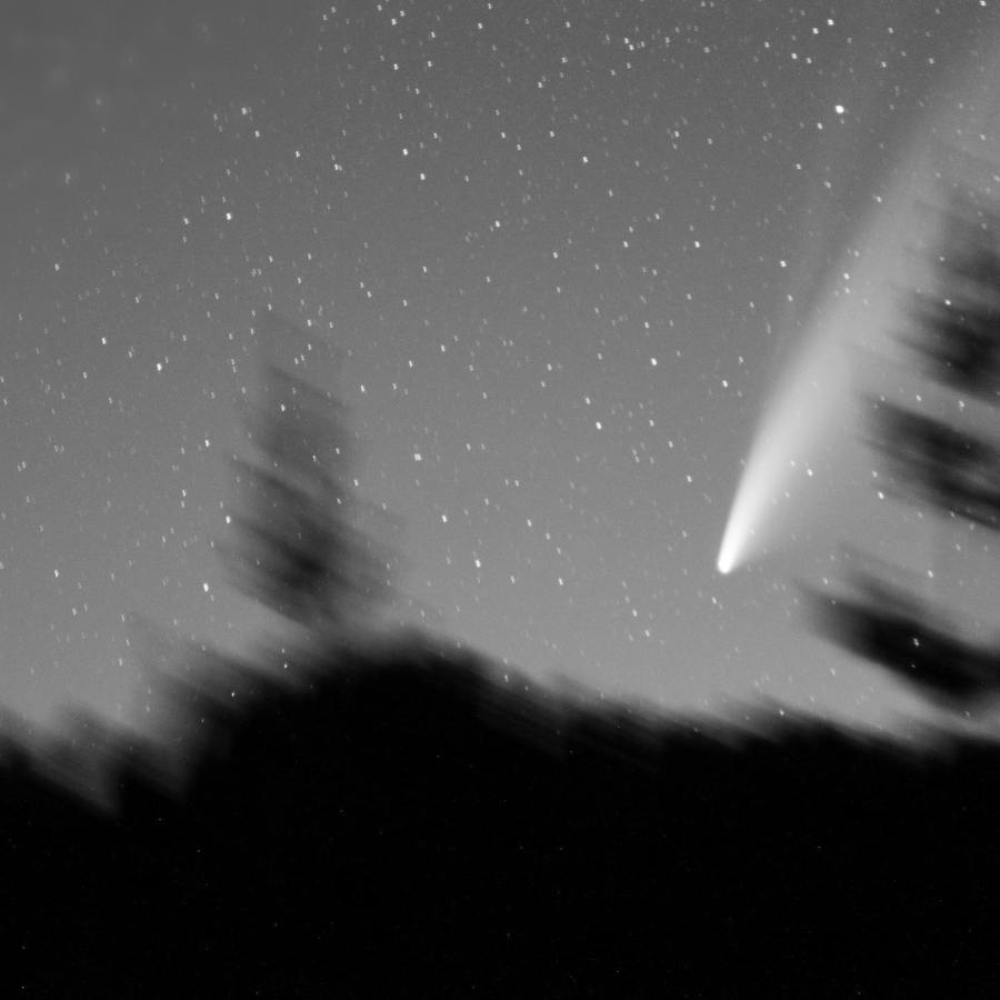 NEOWISE Comet