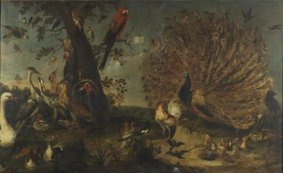 https://commons.wikimedia.org/wiki/File:Frans_Snyders_(Attr.)_-_Concert_of_Birds.jpg