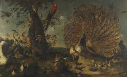 https://commons.wikimedia.org/wiki/File:Frans_Snyders_(Attr.)_-_Concert_of_Birds.jpg