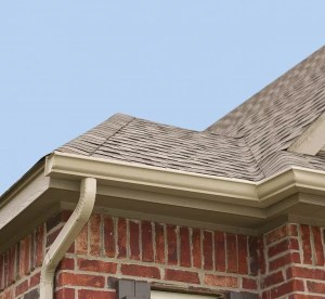 Why Your Gutters Need Summer Maintenance