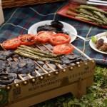 Summer vegetable BBQ picnic