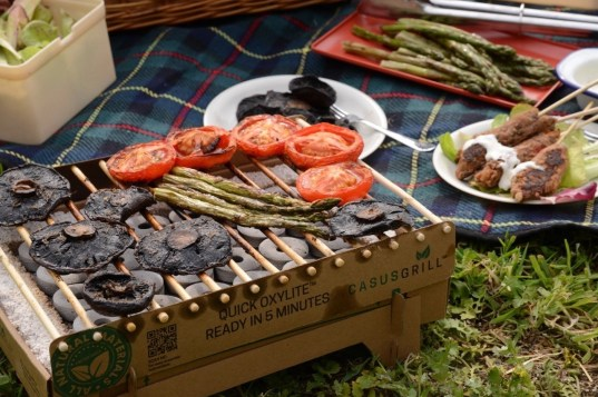 vegetable and dishes for a plant-based BBQ