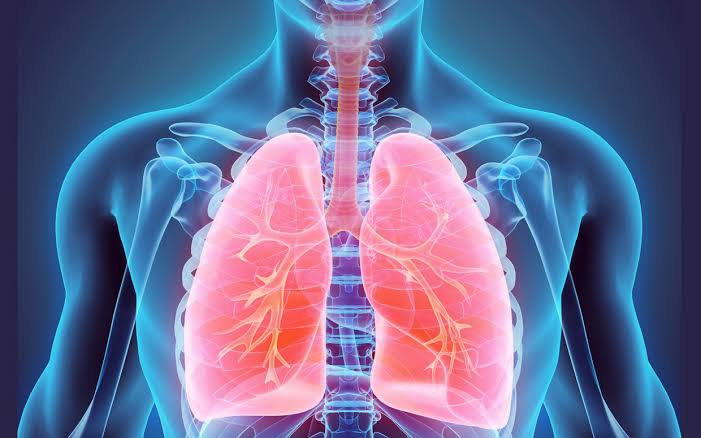 Facts On Tuberculosis (TB) infection
