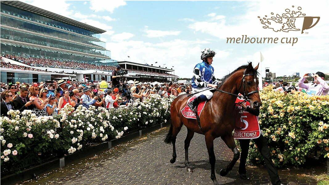 Melbourne Cup Racing Caloundra Sports Bar