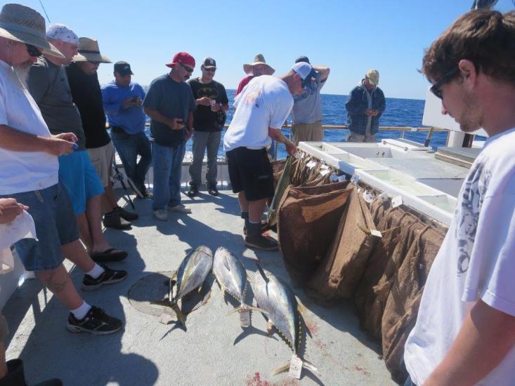 fishing 15 011