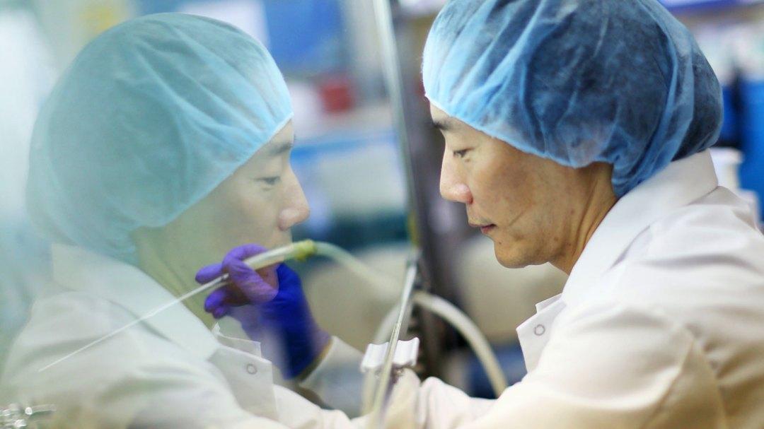 Alumnus John Chi in the lab making progress in the field of stem cells.