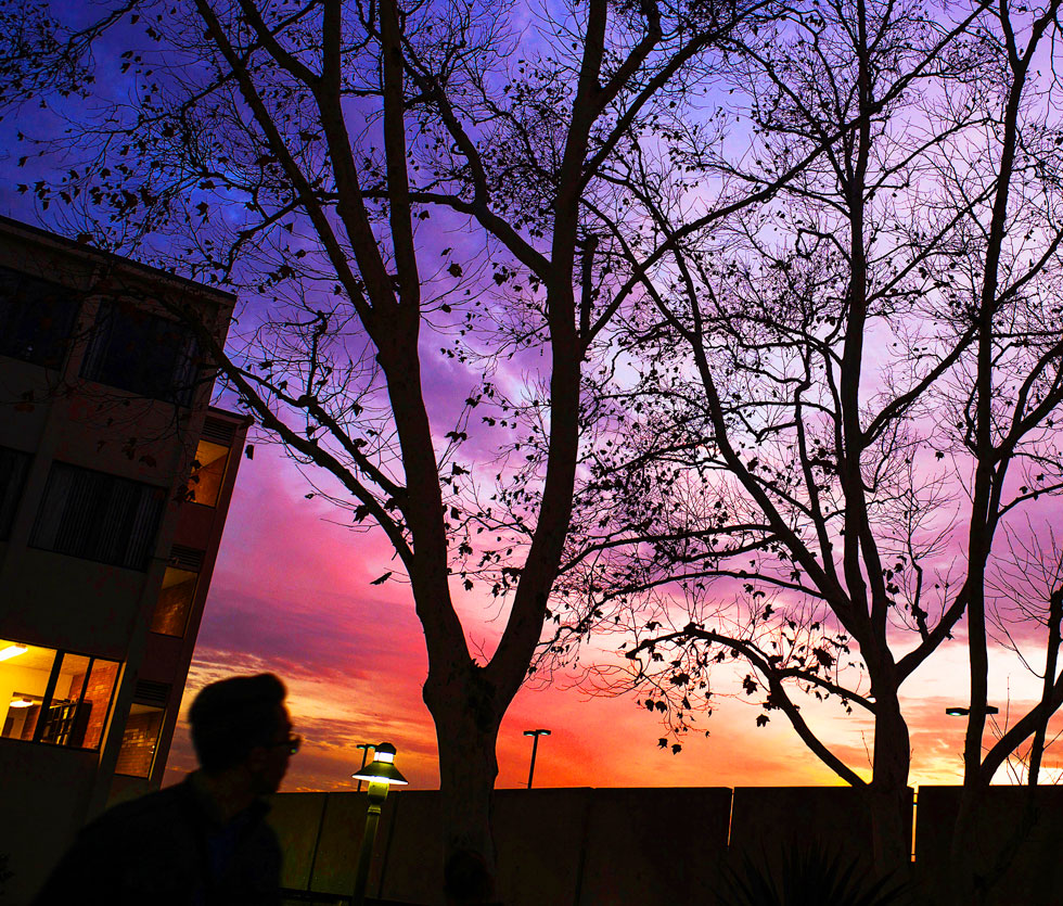 Student on campus over a purple and red sky.