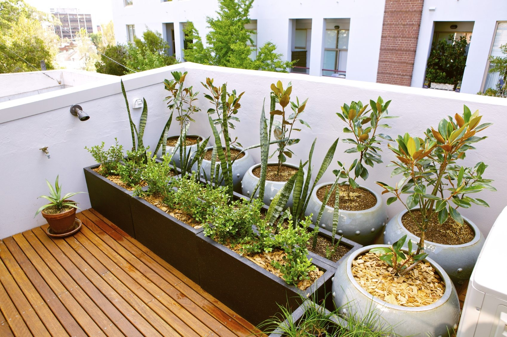 Better Homes And Gardens Containers