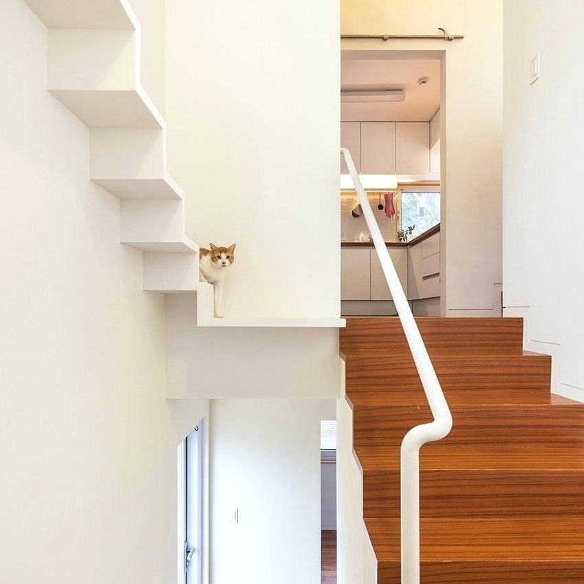 Cat Stairs For Bed