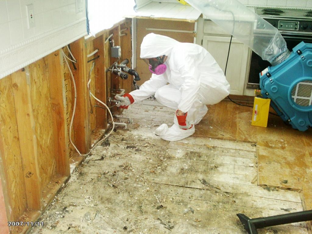 Mold Remediation Portland
