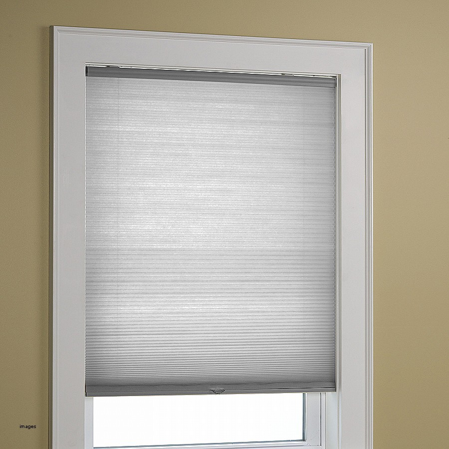 Octagon Window Blinds Lowes