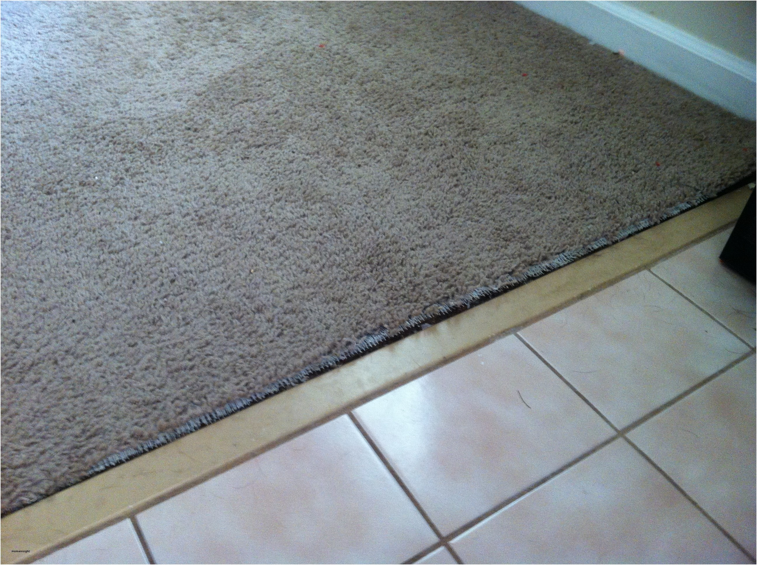 Transition Between Tile And Carpet