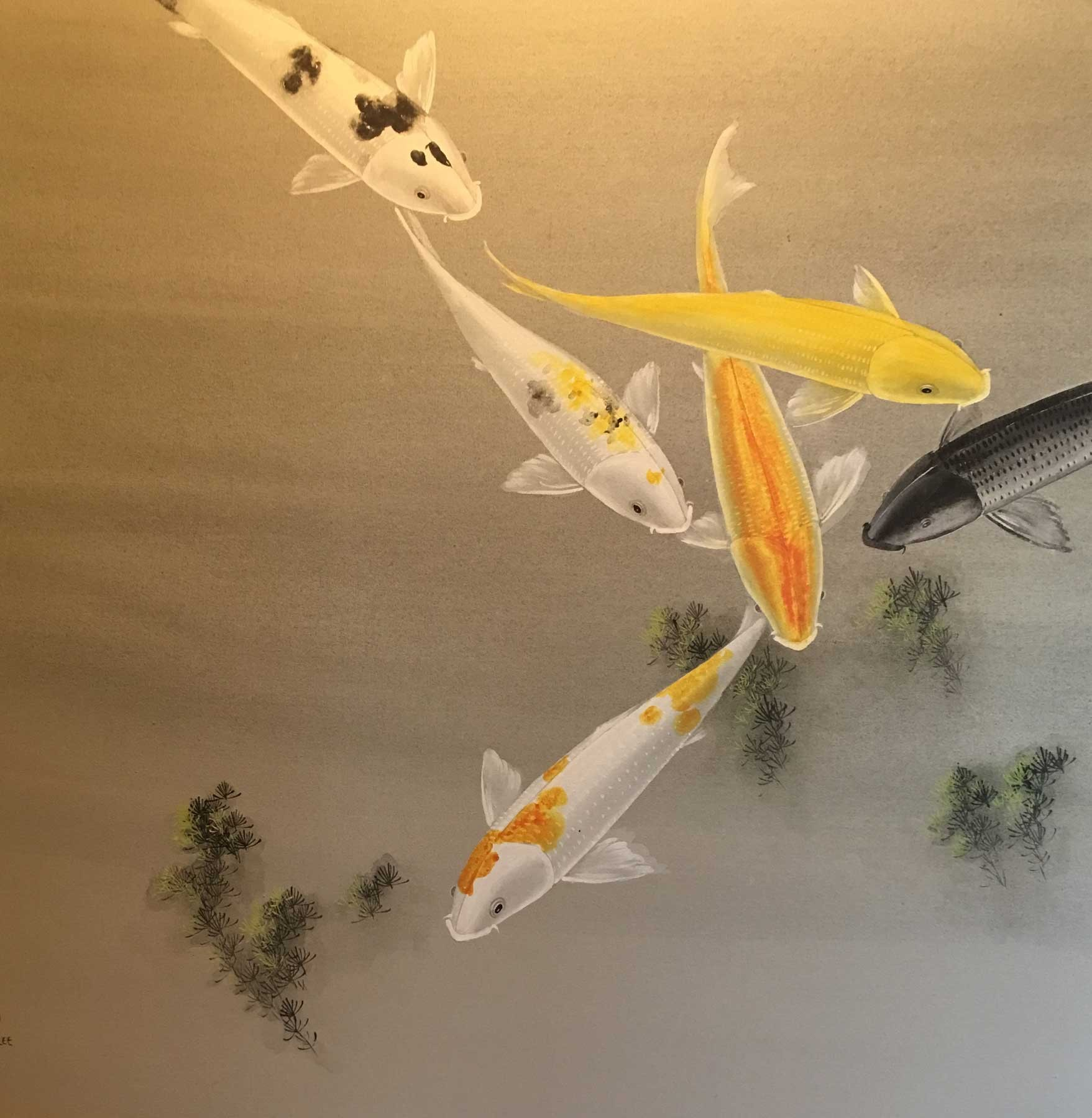 Koi Fish Wall Art