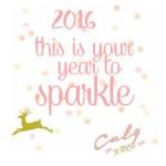 [Vidéo] Belle année 2016 !
