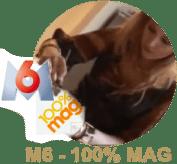 macaron-100-mag2
